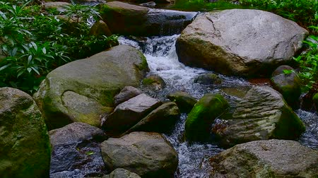 pui : Slow motion video of water flowing in Doi Suthep Pui national park, Thailand.