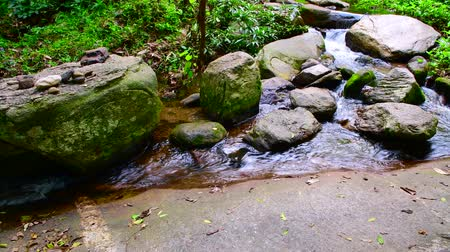 pui : 4K video of water flowing in Doi Suthep Pui national park, Thailand.
