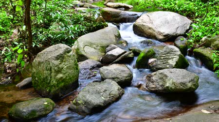 pui : Time lapse video of water flowing in Doi Suthep Pui national park, Thailand.