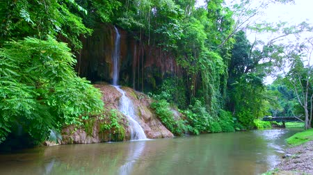 green grass : 4K video of Phu Sang waterfall, Thailand. Stock Footage