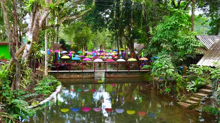 luang : 4K time lapse video of canal in Tham Luang - Khun Nam Nang Non forest park, Thailand.
