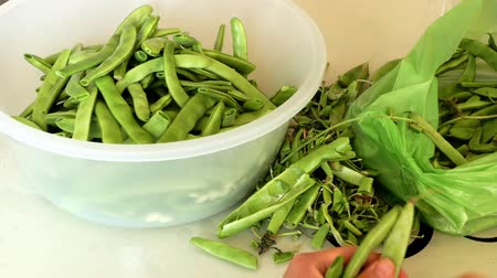 ingredienti : A woman prepares a meal of fresh beans