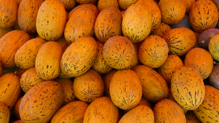 tykev : melons stacked in an area for sale, a large amount of melons for sale,