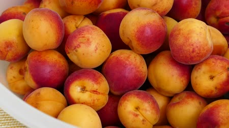 morele : organic red colored apricots, ripe apricots, natural apricot fruit,