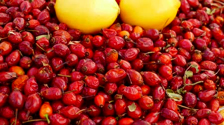 rosehip : rosehip berries and lemon, vitamin C source lemon and rose hips standing side by side.