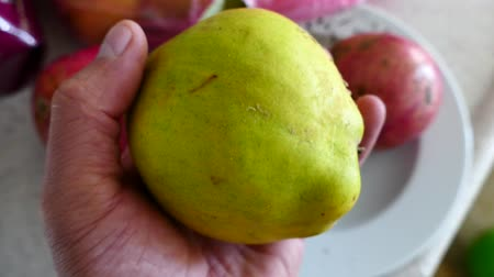 pigwa : a man is turning the quince fruit in his hand, Wideo