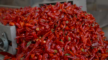 chili : paprika production factory