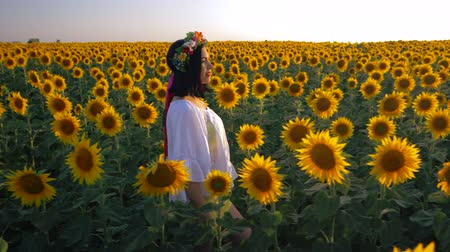 свечение : Beautiful girl with wreath running on yellow sunflower field, raising hands. Freedom concept. Happy woman outdoors. Harvest. Sunflowers field in sunset. Slow motion. Ukrainian style.