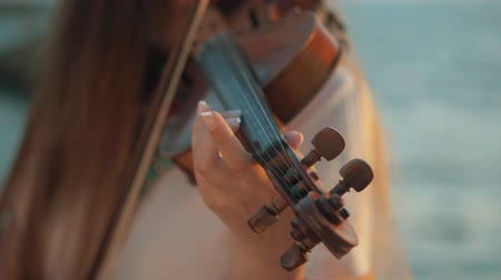 woodwind : Girl violinist playing the violin outdoors. Green leaves backgound. Close up. Musician playing. Slow motion. Stock Footage