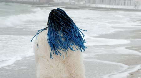blue braid : Young beautiful woman with african kanekalon blue braids walking, dancing on winter sea beach. Afro hairstyle, dyed hair. Girl in white furcoat having fun during snowing. Blizzard.