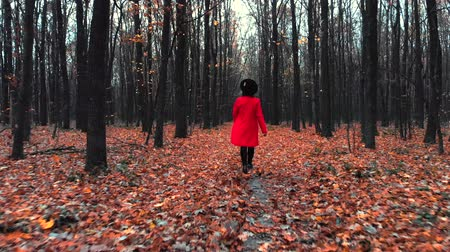 verhuizen : Young woman walking alone along trail in autumn forest. Back view. Travel, freedom, nature concept