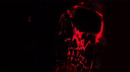 compositing : Black skull head rotates on dark background with bloody red light. Halloween celebration, glamour, style concept Stock Footage