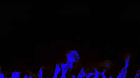 ontvlambaar : Igniting blue fire isolated on black background. Detailed real flames tongues. Halloween, hot burning hell, inferno concept. Slow motion. Stockvideo