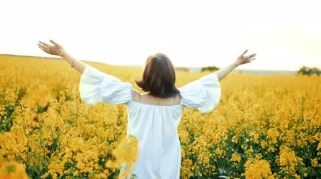 kolza tohumu : Woman with open arms at sunset  in rapeseed yellow flowers field. Gratitude, nature, beauty concept. Stok Video