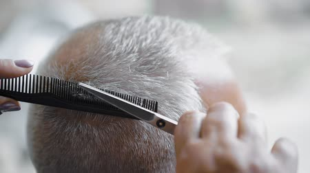 prádelník : Woman hairdresser uses scissors for cutting gray-haired man. Barber using scissors to cut a mans hair. Close-up, slow-motion.
