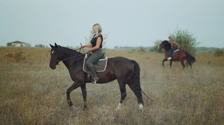 personalidade : Young women riding horses in slow motion on green field. Autumn season. Concept of farm animals, training, horse racing, nature