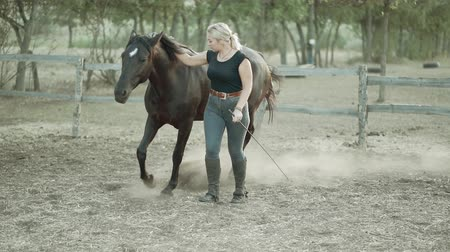 juba : Horse training on country ranch. Beautiful woman runs next to stallion in a corral. concept of farm animals, training, horse racing, nature