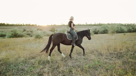 копыто : Young woman riding horse in slow motion on green field. Autumn season. Concept of farm animals, training, horse racing, nature Стоковые видеозаписи