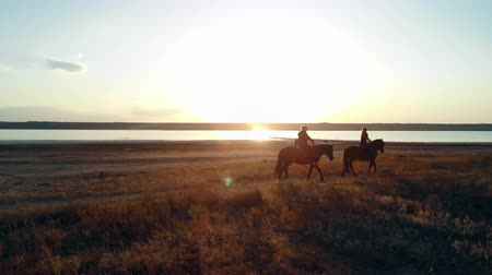 копыто : Drone aerial view of woman riding horses on open coast. Stallion training. Jogging with horse at sunset light. Nature, love, beauty concept