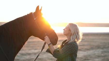 égua : Blonde woman stroking and hugging horse. Beautiful lady with black stallion enjoying sunset nature. Love and friendship concept. Slow motion.