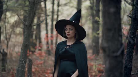 Woman as black witch walks between trees in autumn forest.Girl in long dress, cape, fairy hat. Halloween concept, cosplay dressing up Wideo