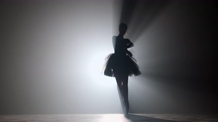 этап : Professional ballerina dancing ballet in spotlights smoke on big stage. Beautiful young girl wearing black tutu dress on floodlights background.