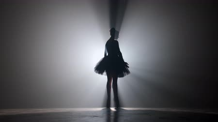 tüt : Solo performance by ballerina in tutu dress against backdrop of luminous neon spotlight in theater. Silhouette of woman in point shoes dancing classical movements.