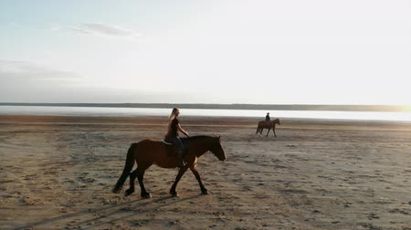 копыто : Drone aerial view of woman riding horses open coast.Stallion training.Jogging Стоковые видеозаписи