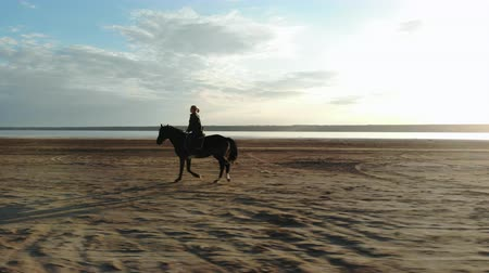 копыто : Rider trainer on walk with horse stallion in nature by river. Woman gallops.