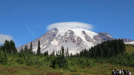alpes : Walking for Mount Rainier - Washington Stock Footage