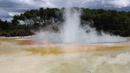 harikalar diyarı : View at steaming Champagne Pool, New Zealand Stok Video