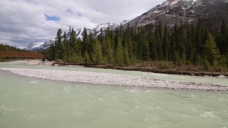 ingiliz columbia : Panorama with Vermilion River, Kootenay NP, Canada Stok Video