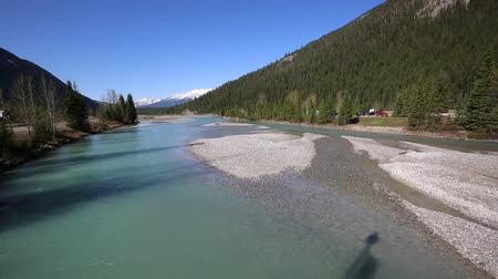 patak : Kicking Horse River valley in Field, Canada Stock mozgókép