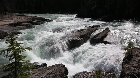 ingiliz columbia : Waterfalls on Kicking Horse River, Yoho NP, Canada