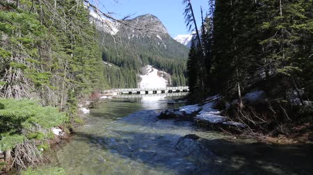 ingiliz columbia : The bridge and the creek, Yoho NP, Canada