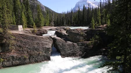 ingiliz columbia : Landscape with Natural Bridge, Yoho NP, Canada Stok Video