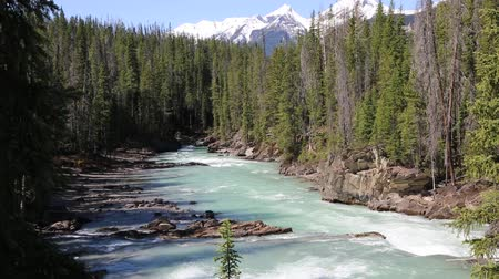 콜롬비아 : Kicking Horse River, Yoho NP, 캐나다