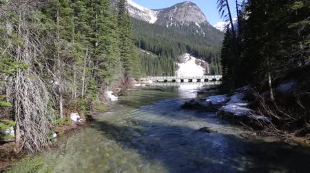ingiliz columbia : The river from Emerald Lake, Yoho NP, Canada
