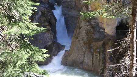 np : Waterfalls in Johnston Canyon, Banff NP, Canada Stock Footage