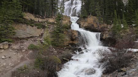 wanderweg : Tangle Creek Falls - Banff NP, Kanada