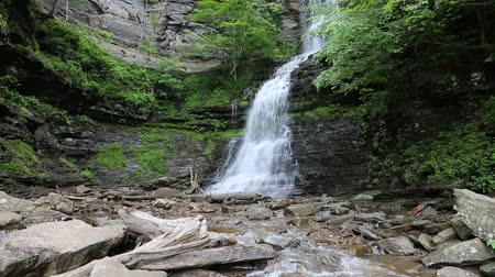 Виргиния : Cathedral Falls, West Virginia Стоковые видеозаписи