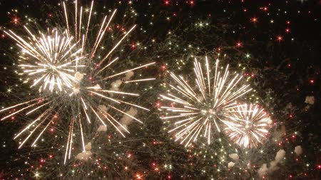 to celebrate : fireworks Stock Footage