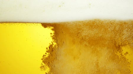 cerveja : close up of the beer