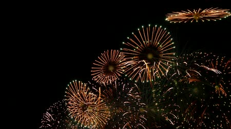 firework display : the fireworks in the night sky