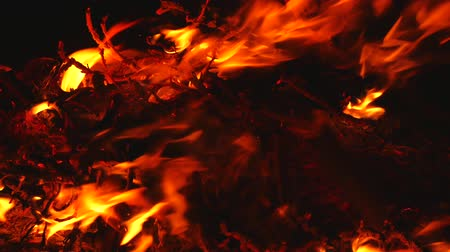 eleven : close up of the fire