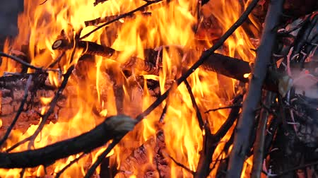 сожгли : close up of the bonfire