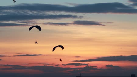 pára quedas : HD : group of paraglider activity fly with beautiful sunset background