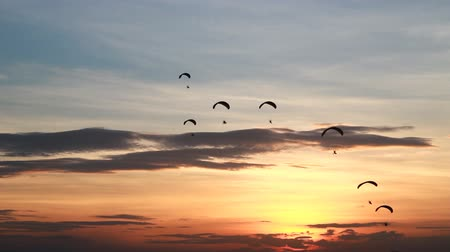 pára quedas : Set collection montage, Group of parachute or paramotor fly in sunset, sport activity, high definition clip, Thailand. Vídeos