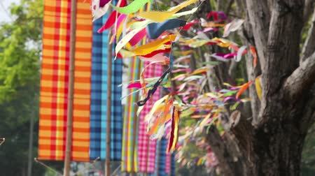 bhutan : Pray flag, a kind of holy symbol or festival in buddhism culture.