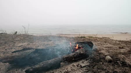 forget : Small bonfire on sandy beach near lake water. Someone forgot to put out the fire. One of the causes of forest fires in Europe